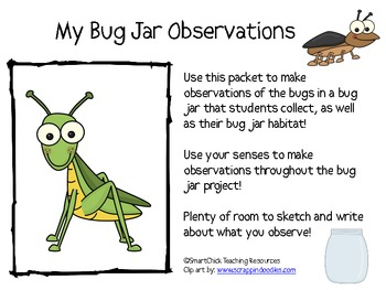 My Bug/Bug Jar Observation Journal