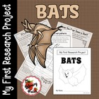 My First Research Project: Bats