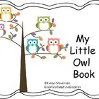 My Little Owl Book