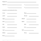 My Survey Sheet
