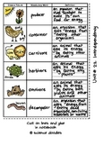 NO. 5 Five Unit Set Vocabulary Sheets by Science Doodles