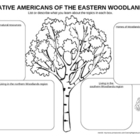 Native Americans of the Woodlands - notes organizer