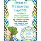 Natural Resources Lapbook
