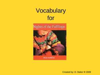 Nights of the Pufflings Vocabulary Houghton Mifflin Series
