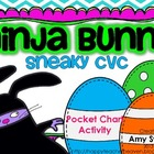 Ninja Bunny Sneaky CVC Pocket Chart station/center activit