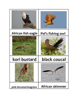 Nomenclature Cards - Animals - Africa - Botswana