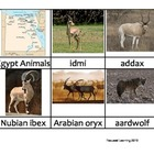 Nomenclature Cards - Animals - Africa - Egypt