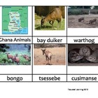 Nomenclature Cards - Animals - Africa - Ghana