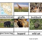 Nomenclature Cards - Animals - Africa - Guinea