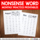 Nonsense Word Fluency Freebie (NSF) DIBELS Practice Pages
