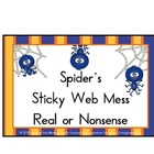 Nonsense Words Spider's Sticky Web Mess