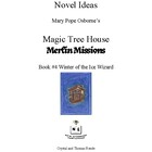 Novel Ideas: Magic Tree House #32: Winter of the Ice Wizard