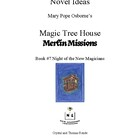 Novel Ideas: Magic Tree House #35: Night of the New Magicians