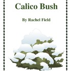 Novel Study, Calico Bush Study Guide