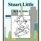 Novel Study, Stuart Little Study Guide