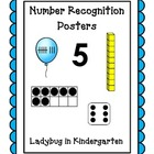 Number Sense Posters 0-20 Bundled