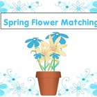 Number &amp; Word Matching Spring Flower Cards