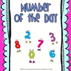 Number of the Day - Number Representation