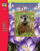 Groundhog Celebration (Grade 1)