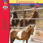 Misty of Chincoteague Lit Link: Novel Study Guide