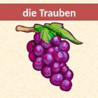 Obst und Gemuse (Fruits & vegetables in German) power point