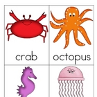 Ocean Animal Nomenclature 3 - Part Vocabulary Cards