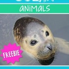 Ocean Animals {FREEBIE}