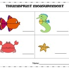 Ocean Animals Measurement FREE