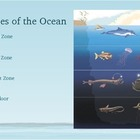 Ocean Zone Habitats