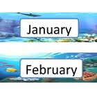 Oceans Alive Calendar Flashcards - Design 1