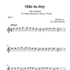 Ode To Joy: Instrumental Duo with Mix n Match parts