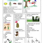 Organisms and Environments Science study guide