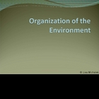 Organization of the Environment Ecology PowerPoint Present