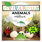 Oviparous Animals Lets Make a Book Science and Literacy Pack