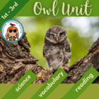 Owl Activity Unit - 2 non-fiction books, vocabulary, works