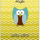 Owl & Ombre Chevron Music Educator Binder III