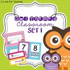 Owl Theme Classroom