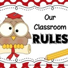 Owl-Themed Classroom Rules Posters