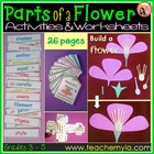 Parts of a Flower Activities - Worksheets-Flash Cards-Craf
