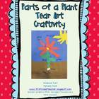 Parts of a Plant Tear-Art Craftivity - FREE