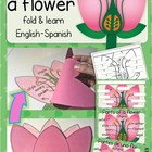 Parts of a flower fold &amp; learn