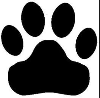 """Paws""itive Behavior"
