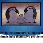Penguin Chick Vocabulary Powerpoint