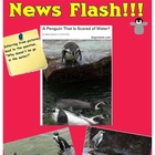 Penguin Inquiry Lessons