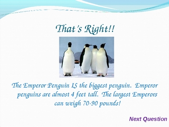 Penguin PowerPoint Game COMPLETE