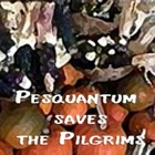 Pesquantum saves the Pilgrims