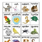 Pet Themed Vocabulary Words Chart Writing Station {FREEBIE}