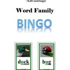 Phonics Advantage Word Family Bingo - A Phonics Game