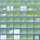 Photosynthesis and Cellular Respiration Unit Bundle - 9 Files