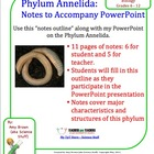 Phylum Annelida (Earthworm) Notes for Powerpoint Presentation